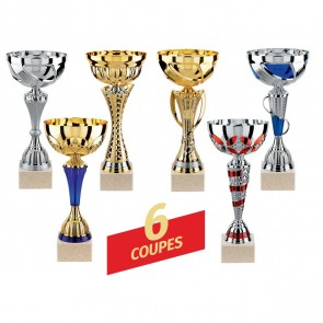 LOT DE 6 COUPES